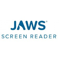JAWS Home Screen Reader