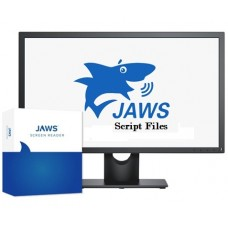 Course in creating script files for JAWS software